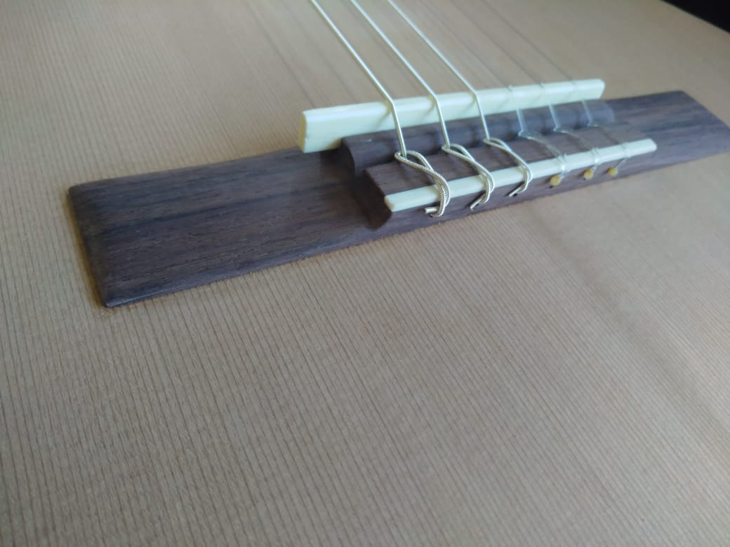 Gustavo Folco Luthier